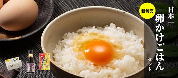 こんな卵かけご飯は初めて!!とにかくおいしい!卵かけしょうゆ。